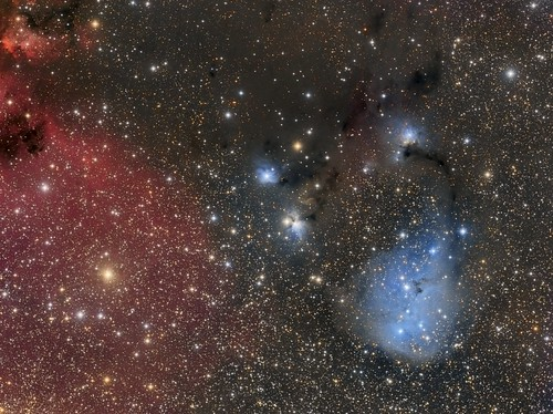 IC 447/446/2169 + NGC 2247/2245 - The Blue Tadpole? | by Paddy Gilliland @ Image The Universe