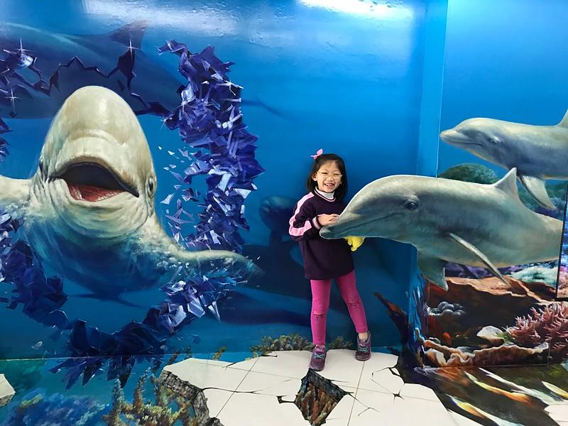 寶妹和海豚造景