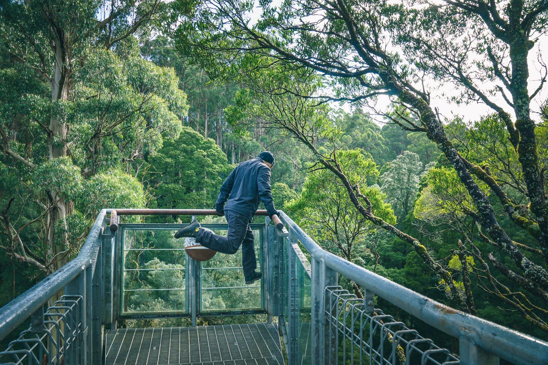 Bouncing, Skywalk Otway park, Australia