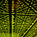 ecstasy green grid dos