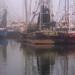 Shrimpboat Panorama - Fog (P3172409-13)