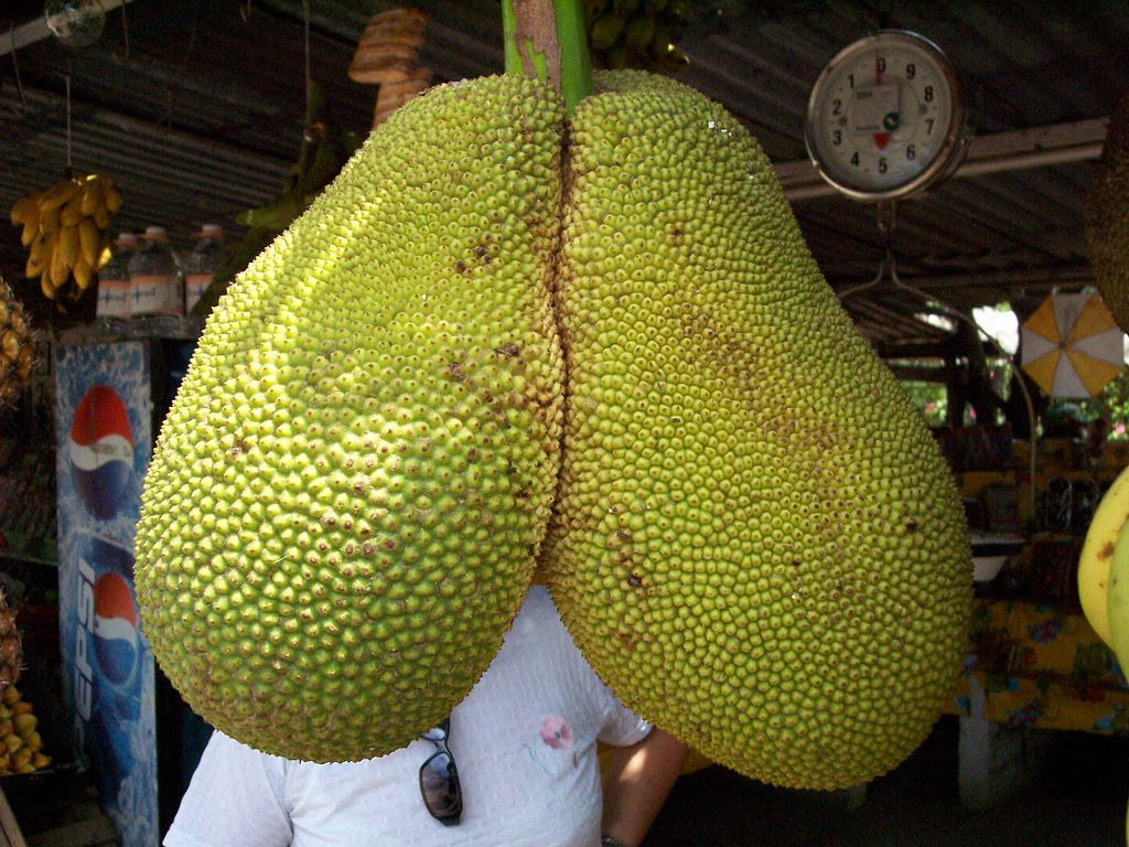 Yaca gemela christian frausto bernal flickr - Frutas tropicales y exoticas ...