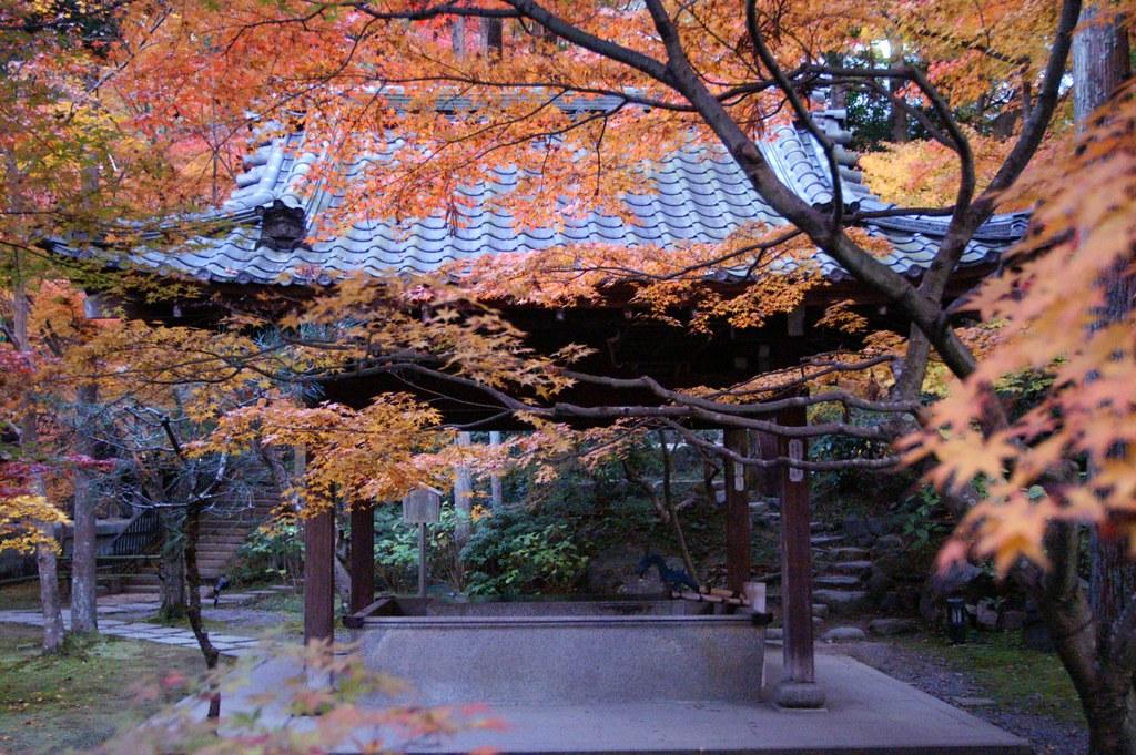 que ver en kyoto en 3 dias