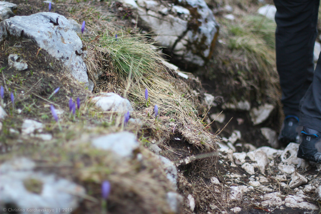 Montenegro [26]: National Park Durmitor