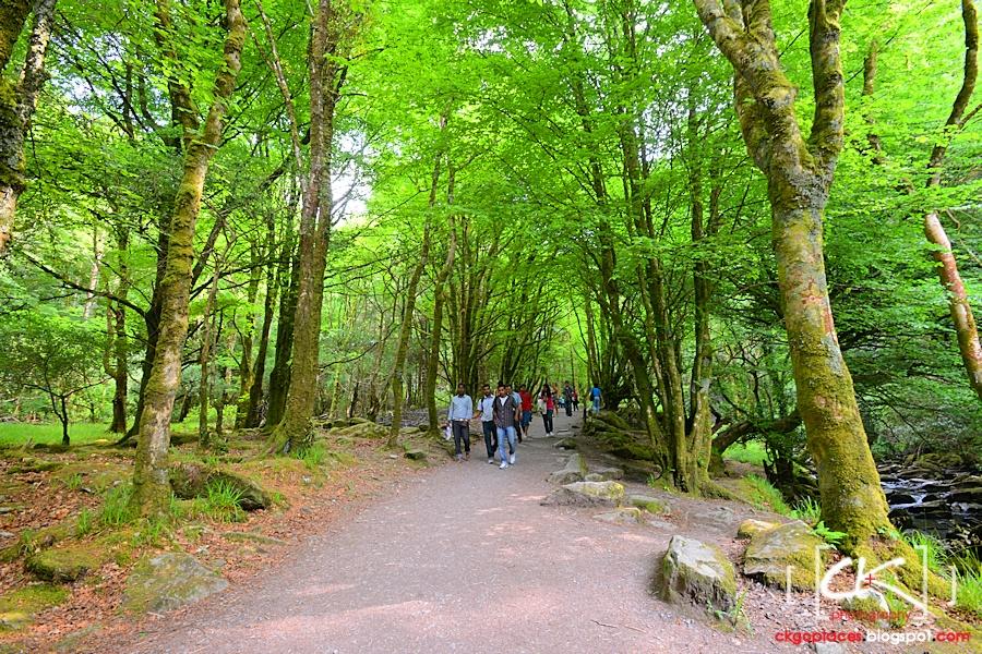 Ireland_132