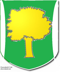 shield - Corridin