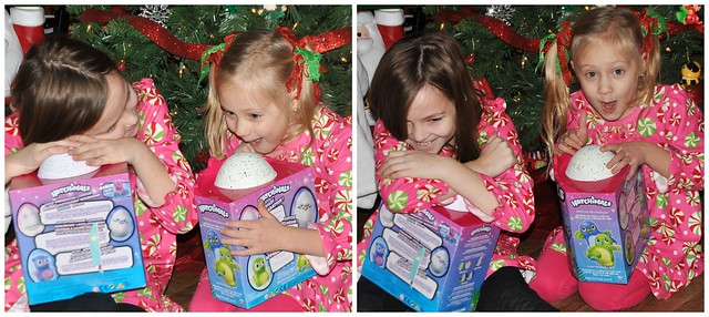 Hatchimal Excitement