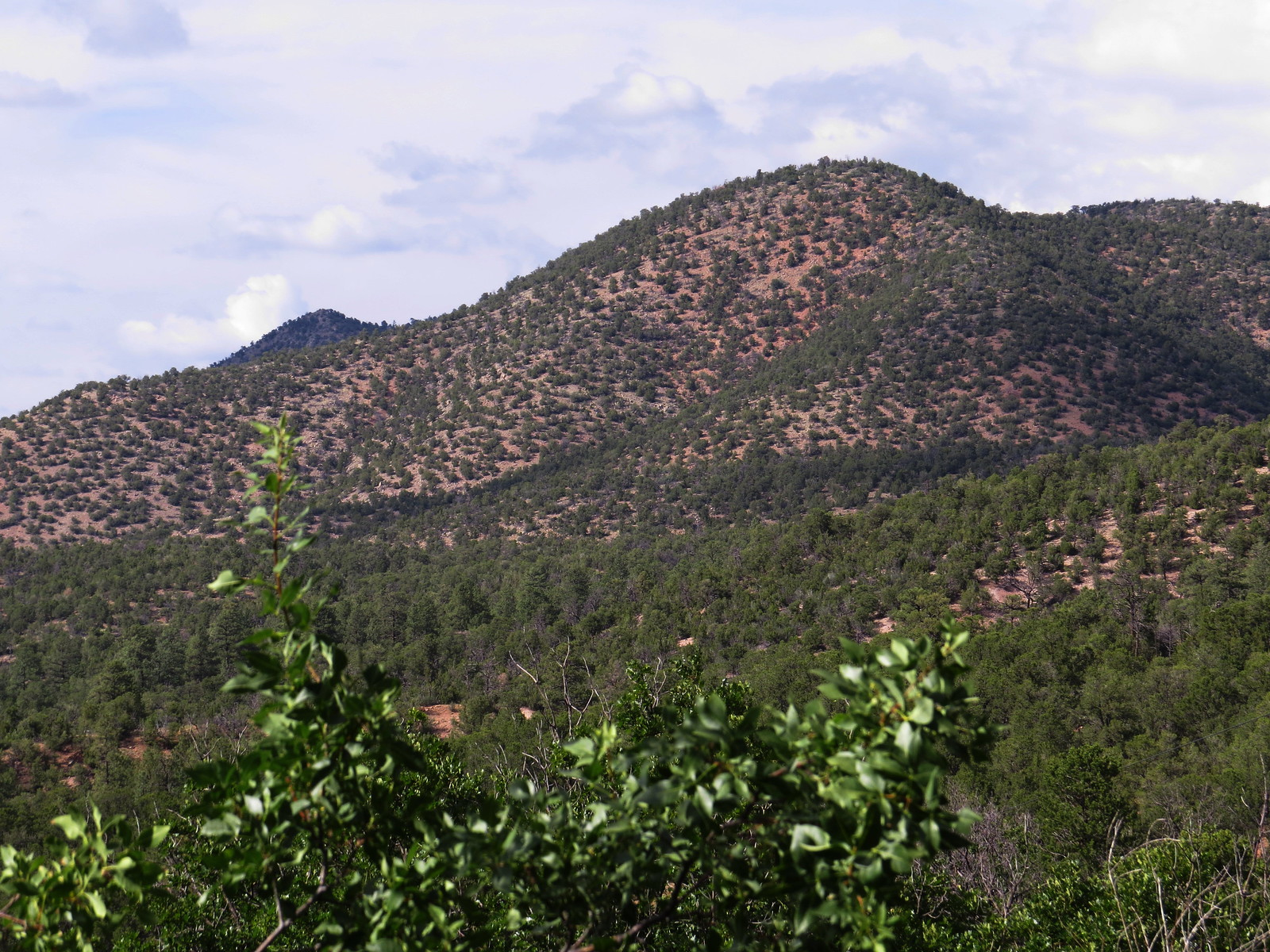 Upper Pacheco Canyon Road, Santa Fe NF, NM