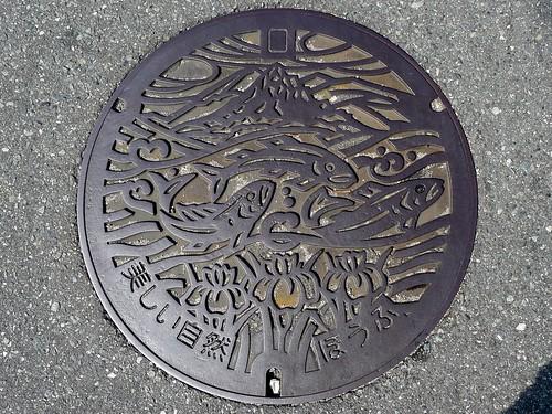 Hofu Yamaguchi, manhole cover 2 (山口県防府市のマンホール2)