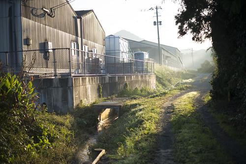 JG J1 12 014 福岡県糟屋郡新宮町 / LEICA M-P × Summicron 50mm F2