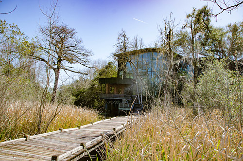 Old Santee Canal Park-7