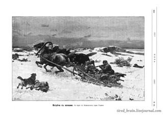 Niva 1887_0259