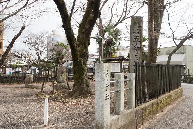hamura_tamashima-10