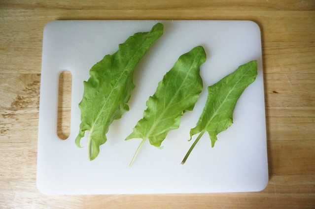 Three leaves of sorrel lay on a cutting board like leafy arrows, vibrant green against the white plastic.