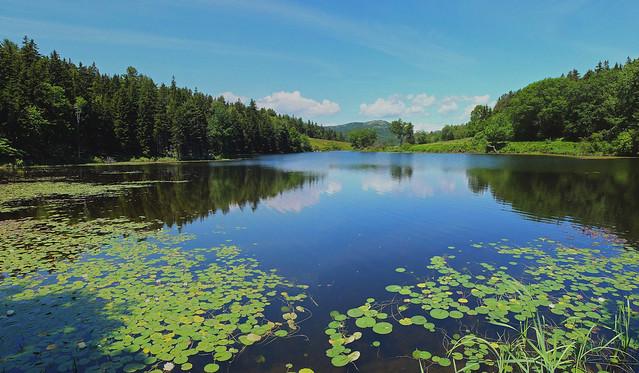 Lilttle Long Pond 6-30-15