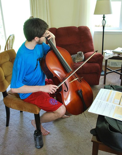 Learning the cello