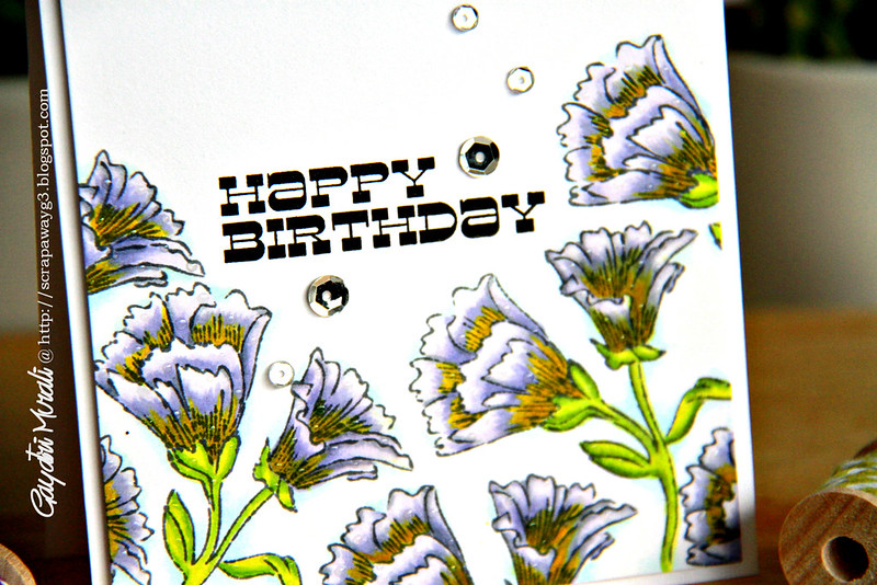 Happy Birthday closeup!