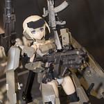 AMF-13