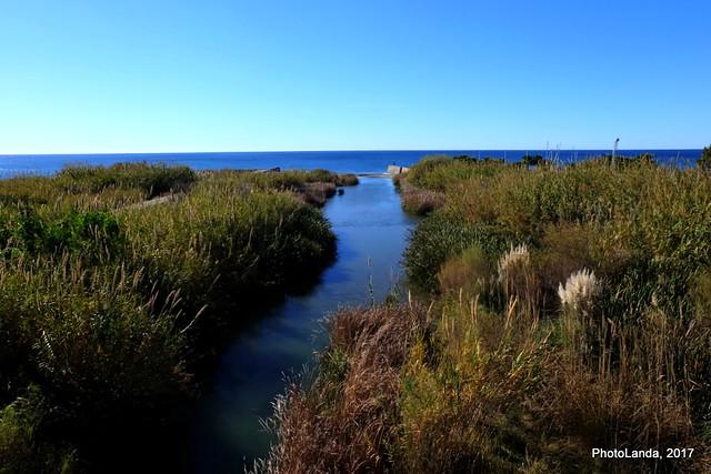 Desembocadura del río Guadalfeo (Wadi-l-fay)