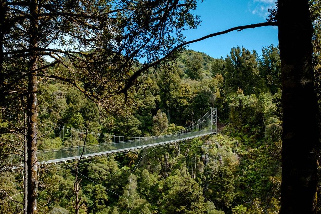 170113_Rotorua to Nat Park -52