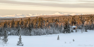 Winter Landscape | by Sigurd R
