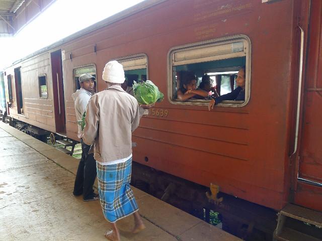 241-train