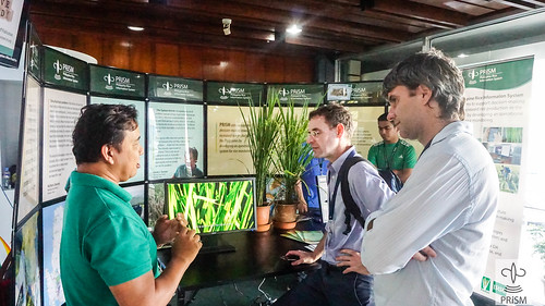 PRISM Exhibit during Partners' and Farmers' Day at IRRI