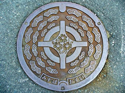 Mizuho Kyoto, manhole cover (京都府瑞穂町のマンホール)
