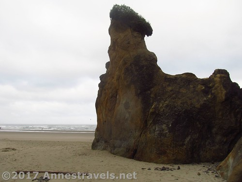Sea stack south of Hug Point, Oregon