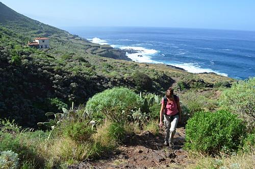 Route above North coast, December, Tenerife