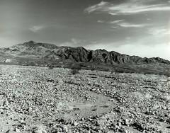 Death Valley 1981