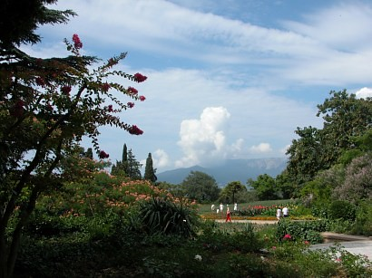 Nikitsky Botanical Gardens In Nikita Near Yalta Nikitsky B Flickr
