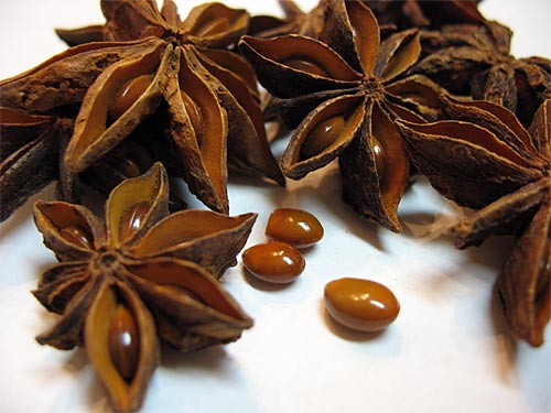 Star Anise Seed Pods   We bought these at a filipino ...