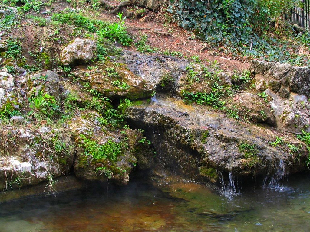 hot springs national park christian women dating site Hot springs is a national park even urbanites will love the smallest of the national parks—at only 5,550 acres—hot springs actually borders the city that has made a profit out of tapping and distributing the park's main resource, mineral-rich waters.