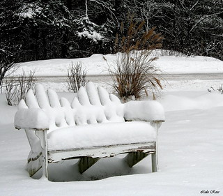 Garden bench in winter | by Lida Rose