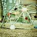 bucky's playground