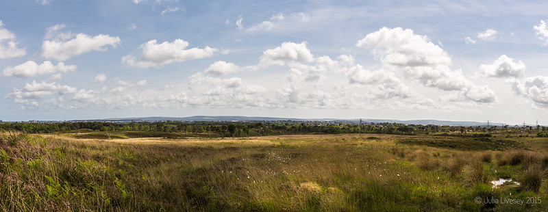 Panorama across Upton Heath