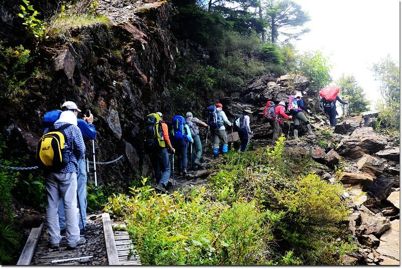 玉山登山步道 8