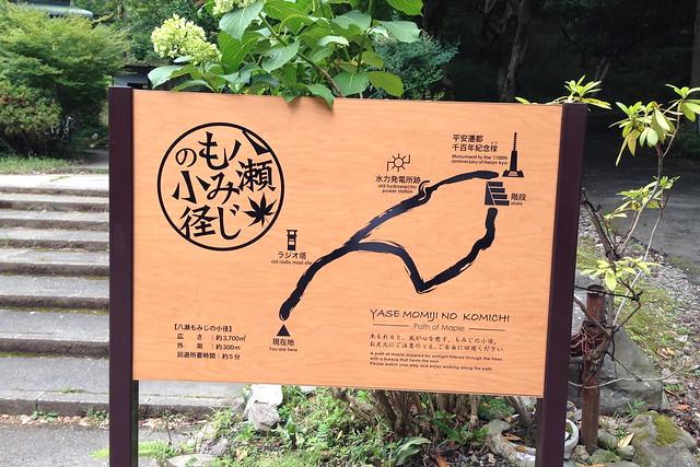 2015/06 八瀬比叡山口 #02