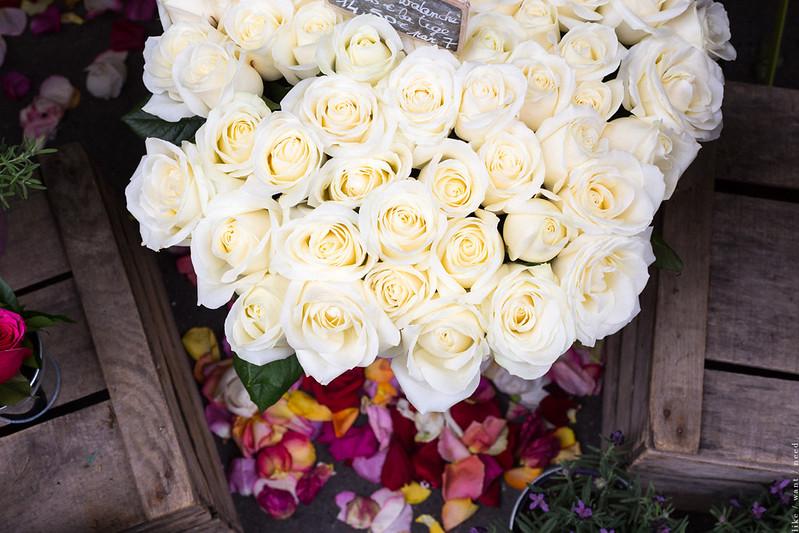 Fleurs, Rue Lepic