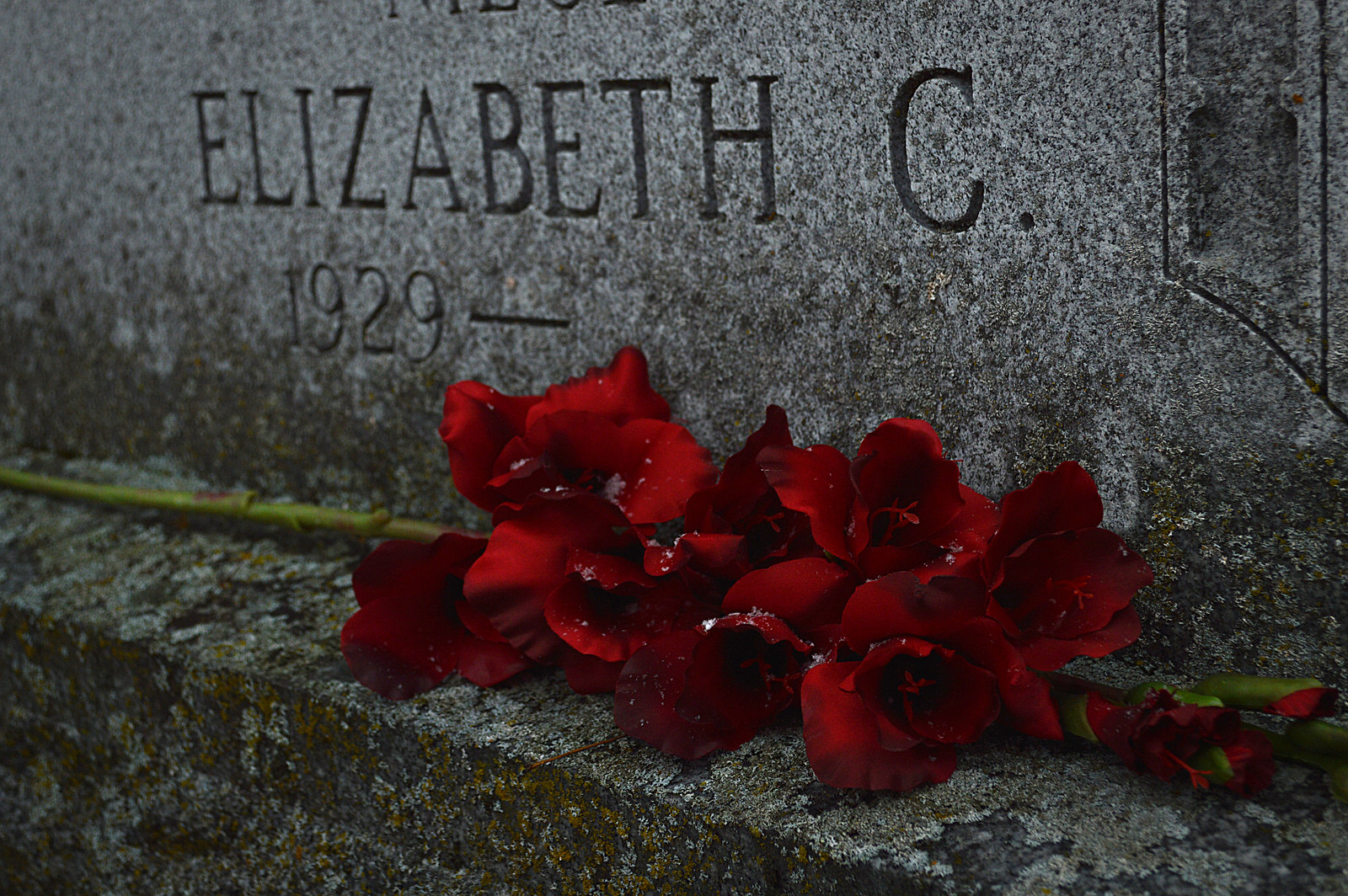 elizabethside