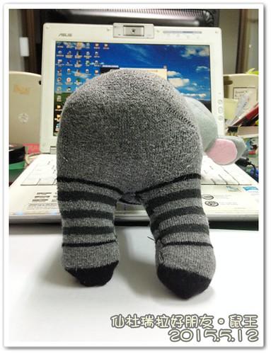 0512-鼠王 (3)