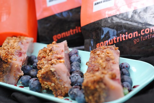 Peanut Butter and Jelly Jam Protein Slice GoNutrition