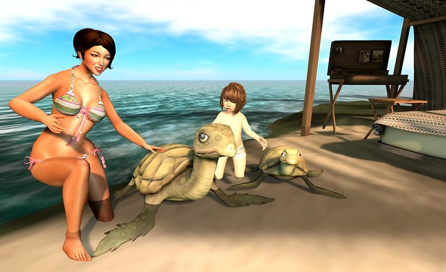 Fashiowl - A Turtle! - Pose for Mesh Avenue Event