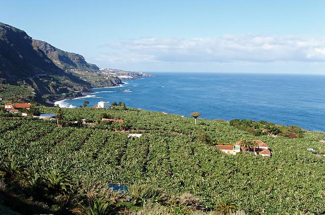 View from Mirador San Pedro, Los Realejos, Tenerife