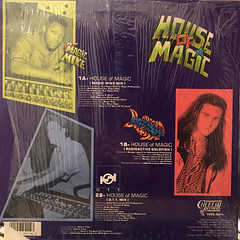 D.J. MAGIC MIKE:HOUSE OF MAGIC(JACKET B)