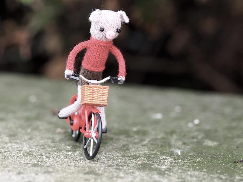 Freddie learned to ride a bike!