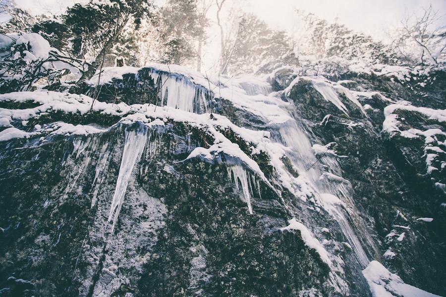 winter wonderland-10
