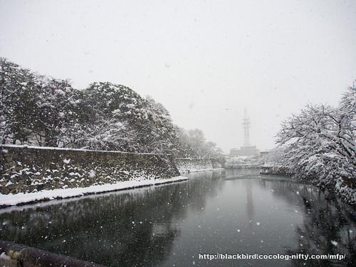 Snow Day 2 #03
