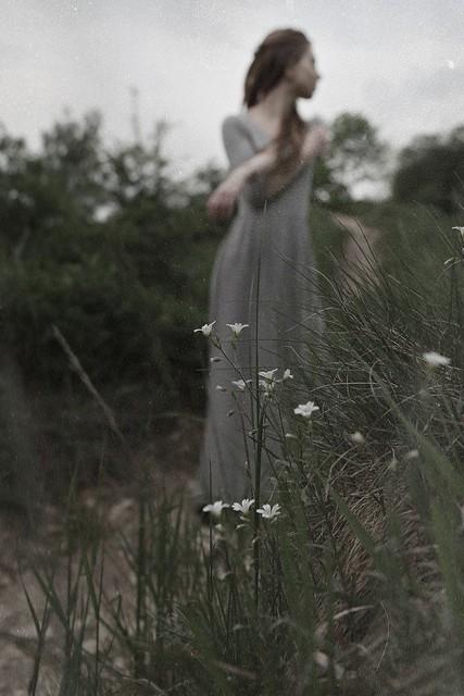 infinitely secret garden